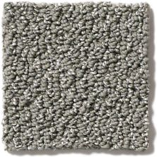 Shaw Floors Vibrant Stone 00501_E9345