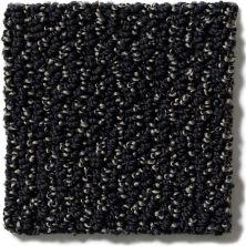 Shaw Floors Vibrant Onyx 00503_E9345