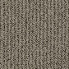 Shaw Floors Simply The Best Vibrant Mocha 00700_E9345