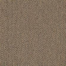 Shaw Floors Simply The Best Vibrant Prairie 00701_E9345