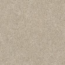Shaw Floors Simply The Best Work The Color Antique White 00110_E9346