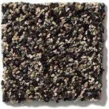 Shaw Floors Hypnotic Porcupine 00702_E9347