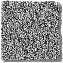 Shaw Floors Reviving Silver Stone 00501_E9349