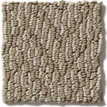 Shaw Floors Reviving Paper Bag 00701_E9349