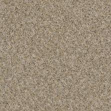 Shaw Floors Frosting Moonlit Sand 00103_E9350