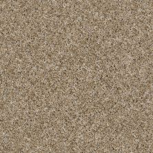 Shaw Floors Frosting Cork 00201_E9350