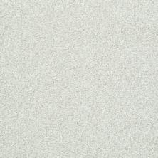 Shaw Floors Wild Extract Twinkle 00100_E9351