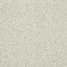 Shaw Floors Wild Extract Moonscape 00102_E9351