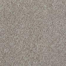 Shaw Floors Wild Extract Flax 00104_E9351