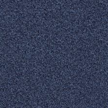 Shaw Floors Simply The Best Wild Extract Indigo Mood 00421_E9351
