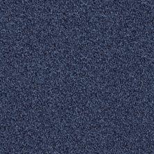 Shaw Floors Wild Extract Indigo Mood 00421_E9351
