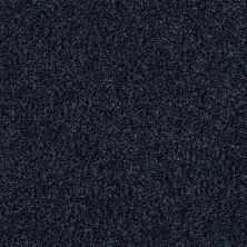 Shaw Floors Simply The Best Wild Extract Classic Navy 00422_E9351
