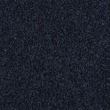 Shaw Floors Wild Extract Classic Navy 00422_E9351