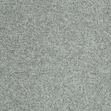 Shaw Floors Wild Extract Portobello 00501_E9351