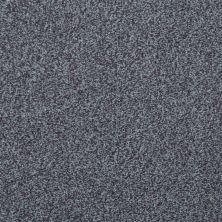 Shaw Floors Wild Extract Storm 00504_E9351