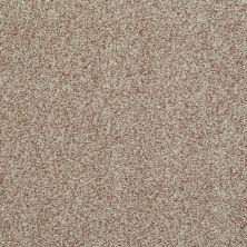 Shaw Floors Wild Extract Camel 00700_E9351