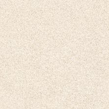Shaw Floors Foundations Palette Pebble 00102_E9359