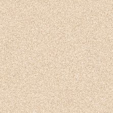 Shaw Floors Foundations Palette Frosted Honey 00200_E9359