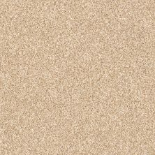 Shaw Floors Foundations Palette Summer Straw 00201_E9359
