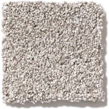 Shaw Floors Foundations Palette Silver Charm 00501_E9359