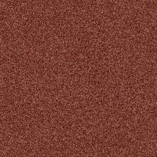 Shaw Floors Foundations Palette Copper 00600_E9359