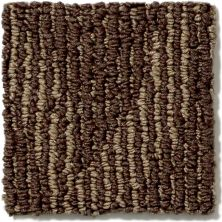 Shaw Floors Foundations Essence Mocha 00703_E9360