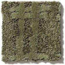 Shaw Floors Foundations Pure Envy Clover 00300_E9361