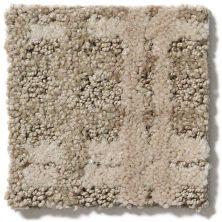 Shaw Floors Foundations Pure Envy Sepia 00700_E9361
