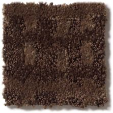 Shaw Floors Foundations Pure Envy Rich Chocolate 00704_E9361