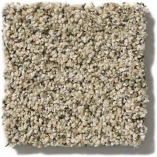 Shaw Floors Foundations Effervescent Sesame Seed 00102_E9366
