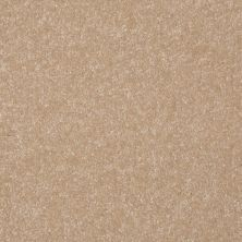 Shaw Floors Value Collections Passageway 3 Net Sugar Cookie 00105_E9377