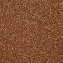Shaw Floors Value Collections Passageway 3 Net Soft Copper 00600_E9377