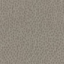 Shaw Floors Simply The Best Lattice Bronze 00761_E9415