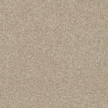Shaw Floors Simply The Best Of Course We Can III 12′ Linen 00100_E9425