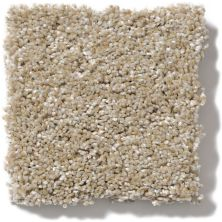 Shaw Floors Value Collections Of Course We Can II 12′ Net Sand Castle 00101_E9435