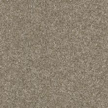 Shaw Floors Value Collections Of Course We Can II 12′ Net Cameo 00103_E9435