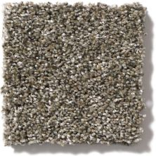 Shaw Floors Value Collections Of Course We Can II 12′ Net Arbor 00104_E9435