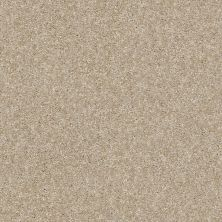 Shaw Floors Value Collections Of Course We Can II 12′ Net Sepia 00105_E9435