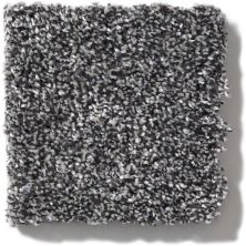 Shaw Floors Value Collections Of Course We Can II 12′ Net Shadow 00502_E9435