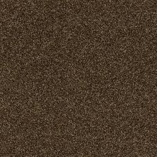 Shaw Floors Value Collections Of Course We Can II 12′ Net Sedona 00702_E9435