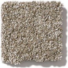 Shaw Floors Value Collections Of Course We Can II 15′ Net Cameo 00103_E9438