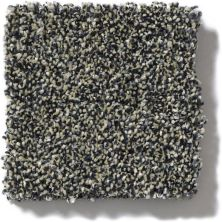 Shaw Floors Value Collections Of Course We Can II 15′ Net Marina 00400_E9438