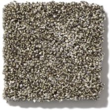 Shaw Floors Value Collections Of Course We Can II 15′ Net Dynamic 00500_E9438