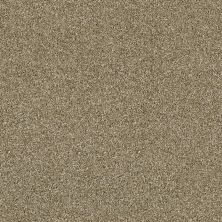 Shaw Floors Value Collections Of Course We Can III 12′ Net Biscotti 00102_E9441
