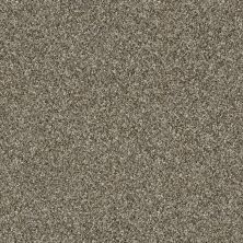 Shaw Floors Value Collections Of Course We Can III 12′ Net Arbor 00104_E9441
