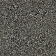 Shaw Floors Value Collections Of Course We Can III 15′ Net Marina 00400_E9444
