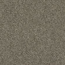 Shaw Floors Value Collections Of Course We Can III 15′ Net Dynamic 00500_E9444