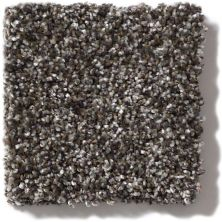 Shaw Floors Value Collections Of Course We Can III 15′ Net Boulder 00504_E9444
