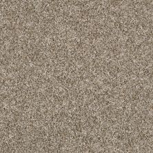 Shaw Floors Value Collections Work The Color Net Sugar Cookie 00101_E9458