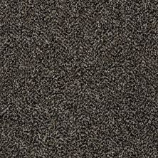 Shaw Floors Value Collections Work The Color Net Black Granite 00503_E9458